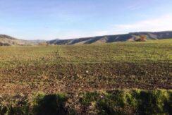 CAseggiato Storico Con Terreno Agricolo Irriguo Pianeggiante